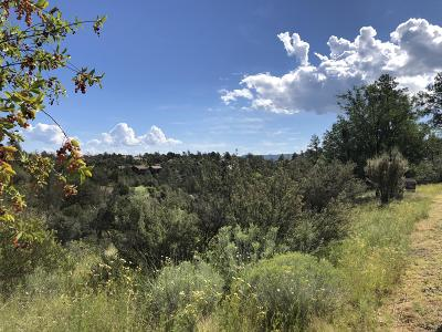 Prescott, Prescott Valley Residential Lots & Land For Sale: 2262 Golf Club Lane