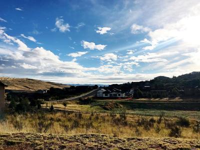 Prescott Residential Lots & Land For Sale: 4352 Hornet Drive