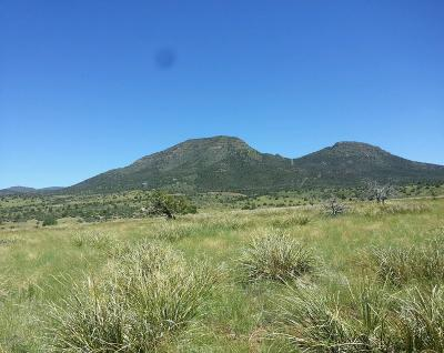 Prescott Valley Residential Lots & Land For Sale: 9401 N Legend Hills Road
