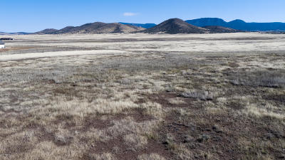 Prescott Valley Residential Lots & Land For Sale: 8170 Open Sky Trail