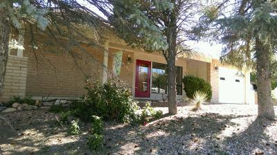 Yavapai County Single Family Home For Sale: 729 N Navajo Drive