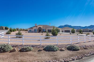 Prescott Single Family Home For Sale: 4175 W Stormy Trail