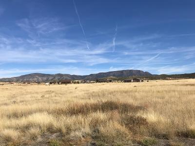 Prescott Valley Residential Lots & Land For Sale: 14 N Rowdy Bunch Pass