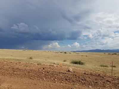 Prescott Valley Residential Lots & Land For Sale: 11.68 Acre E Ventura Way