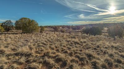 Paulden Residential Lots & Land For Sale: N Upper Verde Trail