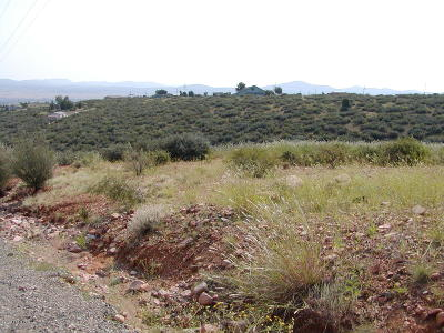 Dewey-Humboldt Residential Lots & Land For Sale: 615 S Glendun Place