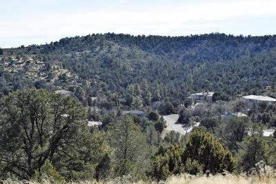 Prescott, Prescott Valley, Chino Valley, Dewey-humboldt Residential Lots & Land For Sale: 560 Sandpiper Drive