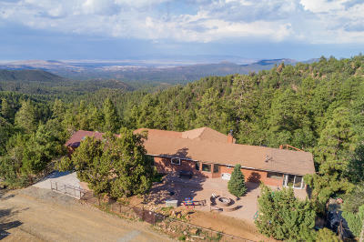Prescott Single Family Home For Sale: 2820 Spruce Mountain Road