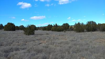 Paulden Residential Lots & Land For Sale: E Prescott Ranch Road