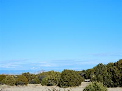 Williamson Valley Estates, Williamson Valley Heights, Williamson Valley Ranch Residential Lots & Land For Sale: 10 Acres S Cowboy Springs Trail