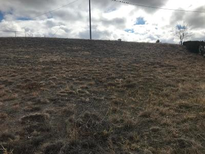 Prescott Valley Residential Lots & Land For Sale: 8785 E Manley Drive