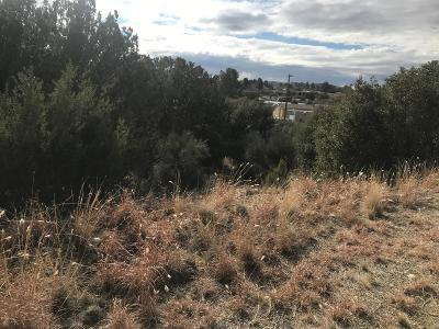 Mayer Residential Lots & Land For Sale: 16055 S Zuni Drive