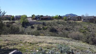 Prescott Single Family Home For Sale: 884 Trail Head Circle