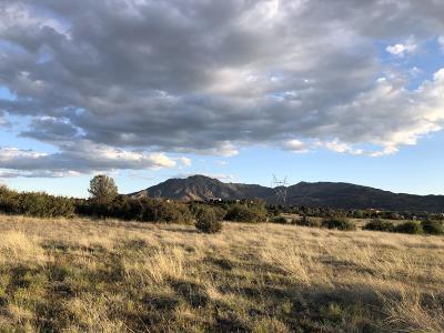 Prescott Residential Lots & Land For Sale: Parcel B3 W Stazenski Road