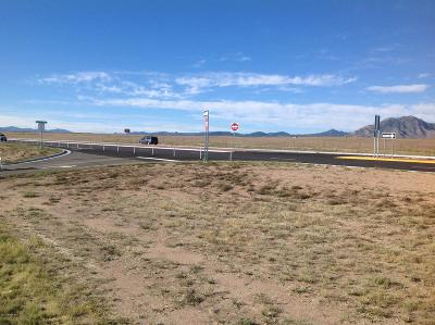 Chino Valley Residential Lots & Land For Sale: 00000 S Highway 89
