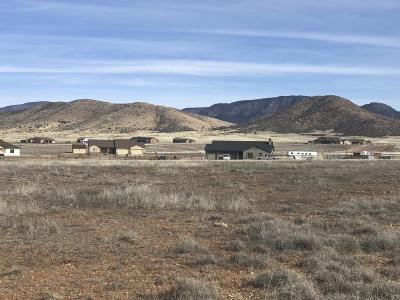 Prescott Valley Residential Lots & Land For Sale: 00 E Pronghorn Lane