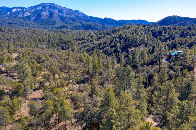 Prescott Residential Lots & Land For Sale: 0000 W Manzanita Dr