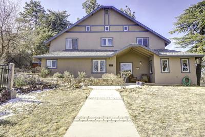 Prescott Single Family Home For Sale: 104 Vista Drive