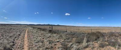 Paulden Residential Lots & Land For Sale: 24xxx Big Springs Ranch Road