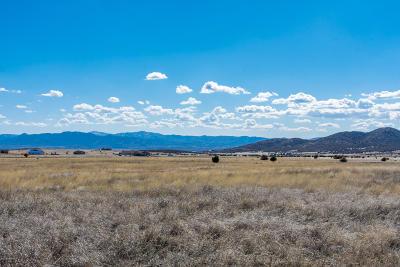 Prescott Valley Residential Lots & Land For Sale: 12825 E Mingus Vista Drive