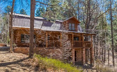 Prescott Single Family Home For Sale: 4875 S Minnie Mine Road