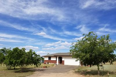 Chino Valley Single Family Home For Sale: 605 S Firesky Lane
