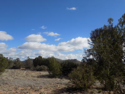 Prescott Residential Lots & Land For Sale: 5160 W Vengeance Trail