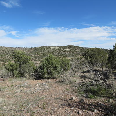 Chino Valley Residential Lots & Land For Sale: 00 N Spotted Dog Trail