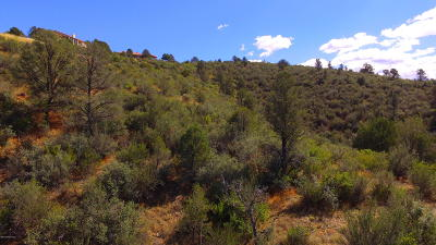 Prescott Residential Lots & Land For Sale: 5295 E Fitzmaurice Drive