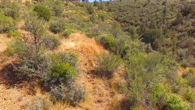 Prescott Residential Lots & Land For Sale: 5275 E Fitzmaurice Drive