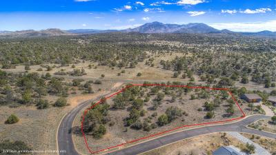 Prescott Residential Lots & Land For Sale: 5080 W Billy Jack Way