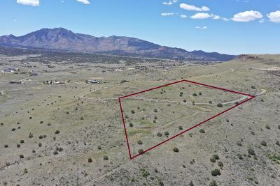 Williamson Valley Estates, Williamson Valley Heights, Williamson Valley Ranch Residential Lots & Land For Sale: 11910 N Cowboy Trail