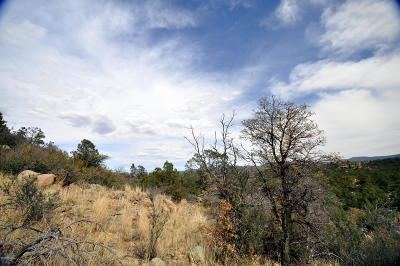 Prescott Residential Lots & Land For Sale: 1045 Quicksilver Drive