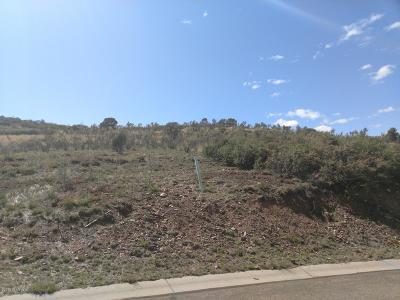 Prescott Residential Lots & Land For Sale: 4365 Hornet Drive