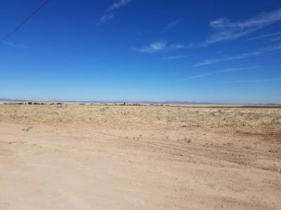 Prescott Valley Residential Lots & Land For Sale: Parcel B Off Antelope Medows Drive