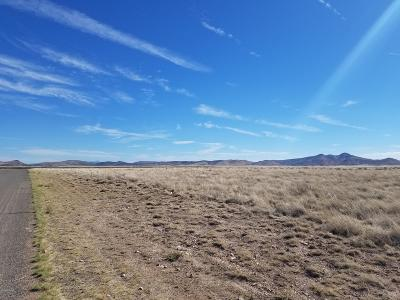 Prescott Valley Residential Lots & Land For Sale: Parcel C Off Antelope Meadows Drive