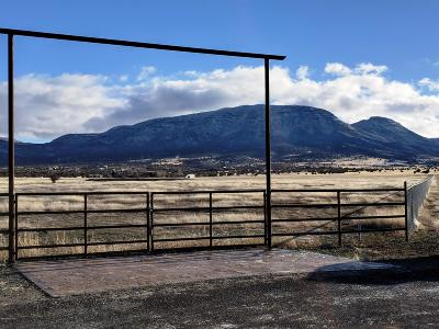 Prescott Valley Residential Lots & Land For Sale: 10a Gallop Way