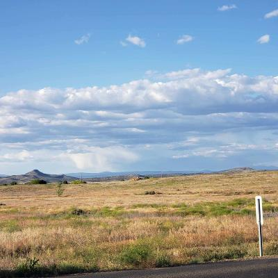 Chino Valley Residential Lots & Land For Sale: 00 Lot 1609