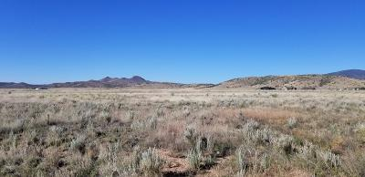 Prescott Valley Residential Lots & Land For Sale: 9900 E Dawn To Milky Way
