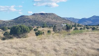 Williamson Valley Estates, Williamson Valley Heights, Williamson Valley Ranch Residential Lots & Land For Sale: Pcl D Bandit Ridge Road