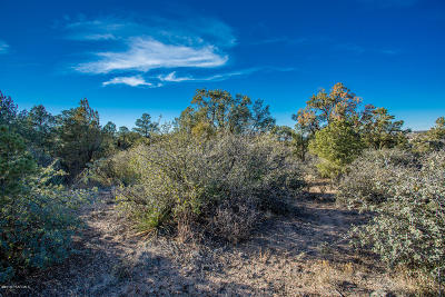 Prescott Residential Lots & Land For Sale: 9910 Clear Fork Road