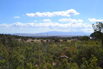 Chino Valley Residential Lots & Land For Sale: 00 W Morgan Trail