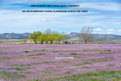 Chino Valley Residential Lots & Land For Sale: 1310 N Rd 2