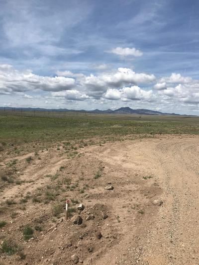 Prescott Valley Residential Lots & Land For Sale: W Wolverine Way