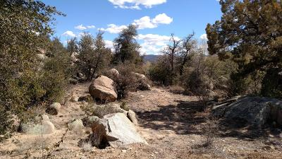 Prescott, Prescott Valley, Chino Valley, Dewey-humboldt Residential Lots & Land For Sale: 1311 Westridge Drive