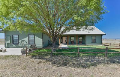 Chino Valley Single Family Home For Sale: 5595 E Americana Way
