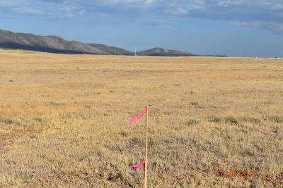 Prescott Valley Residential Lots & Land For Sale: 9975 Rising Moon Way