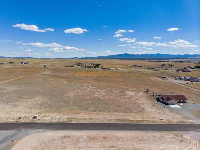 Prescott Valley Residential Lots & Land For Sale: Parcel B E Pronghorn Lane