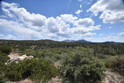 Prescott Residential Lots & Land For Sale: 12615 Stella Drive