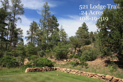 Hassayampa Village Community Residential Lots & Land For Sale: 521 Lodge Trail Circle